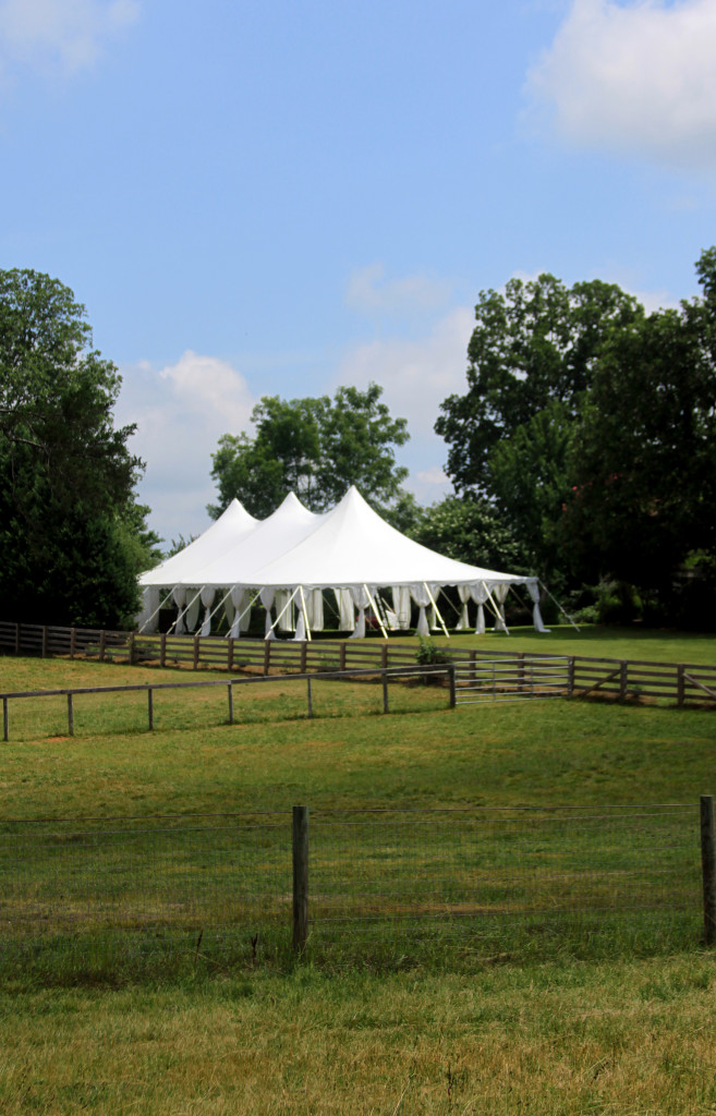 Hart of Dixie Star Wedding Rental Athens, GA